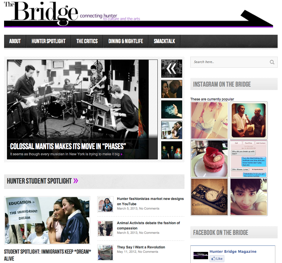 screenshot of the Bridge website